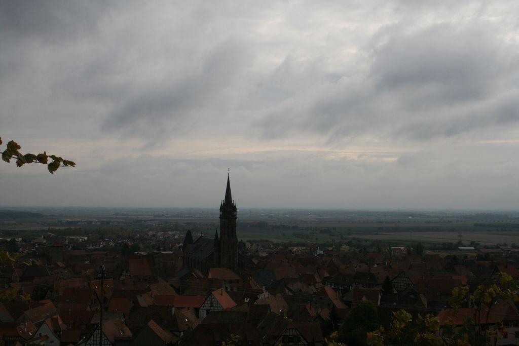 20121028_Dambach_035