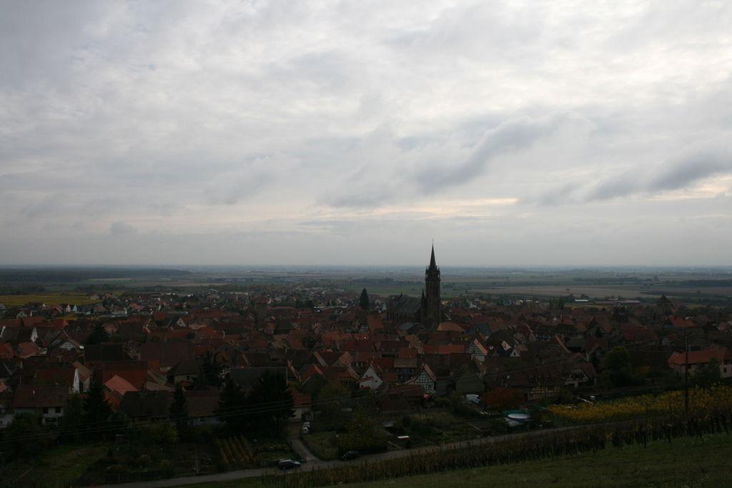 20121028_Dambach_040