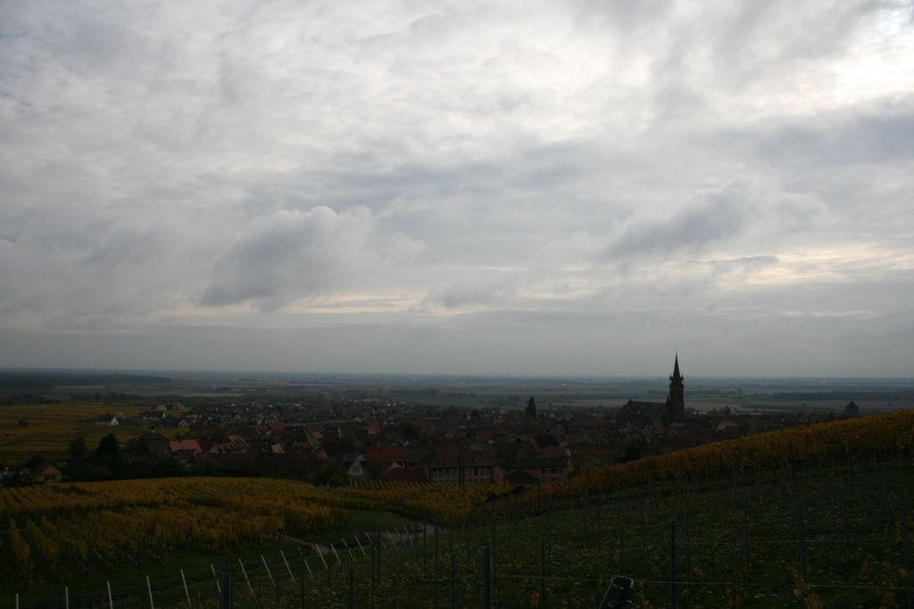 20121028_Dambach_046