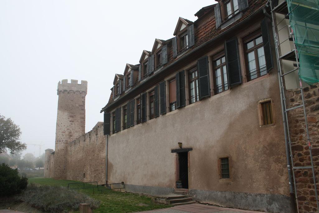 20121029_Obernai_FR_035