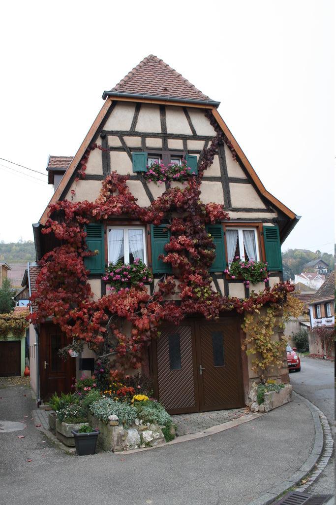 20121029_Obernai_FR_055