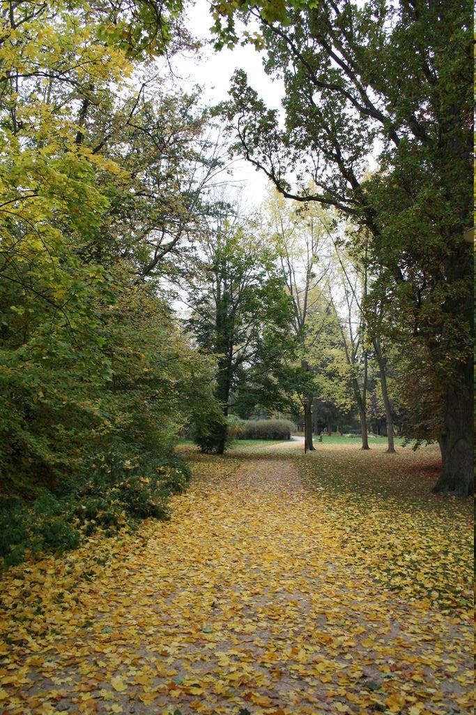 20121029_Obernai_FR_056