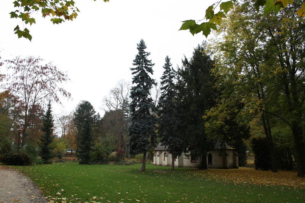 20121029_Obernai_FR_059