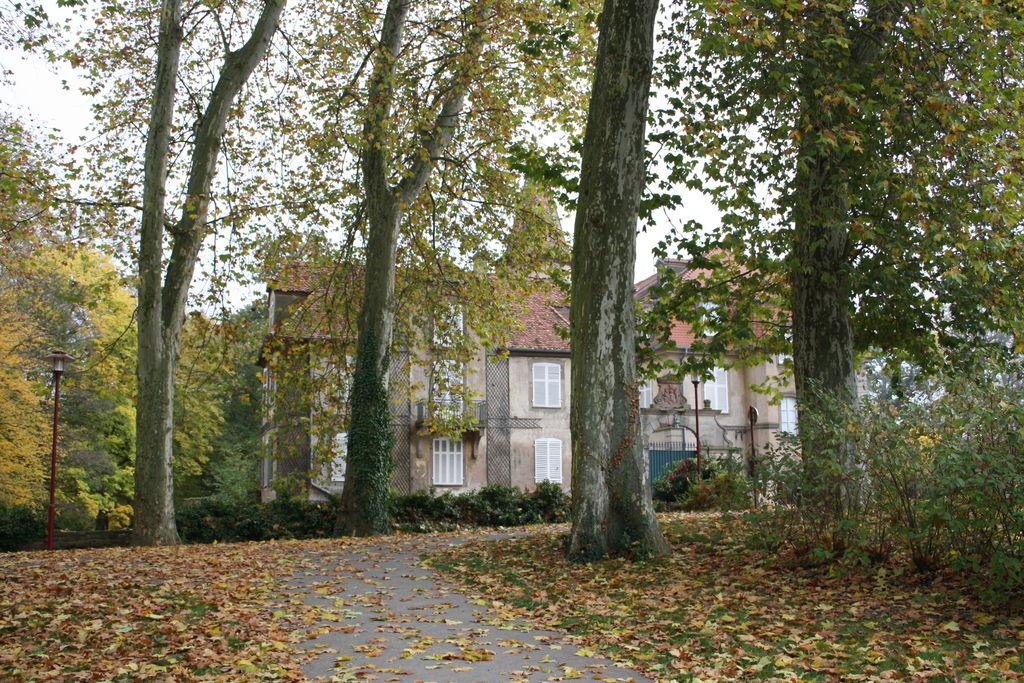 20121029_Obernai_FR_061