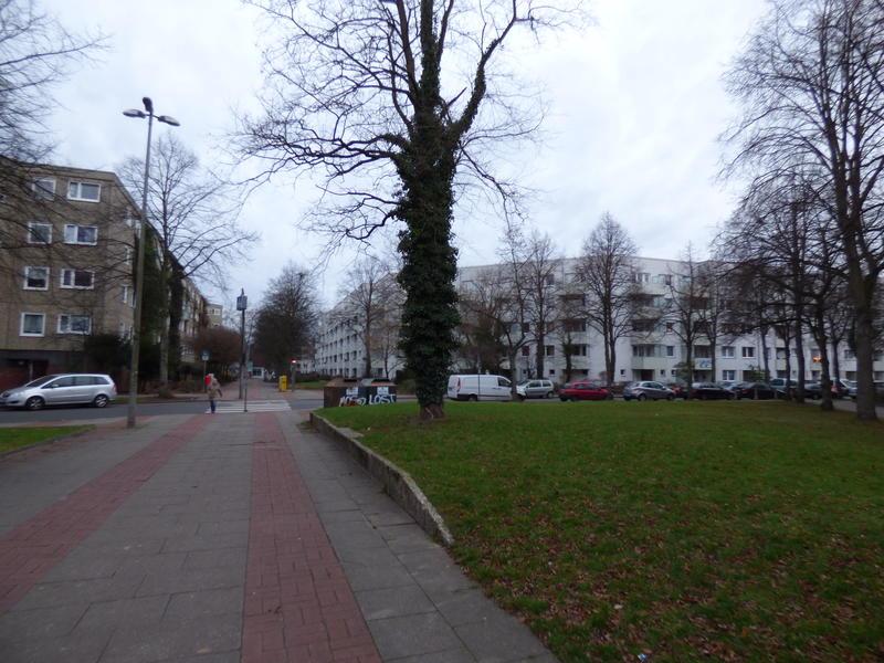 20131224_Hamburg_Steilshoop_005