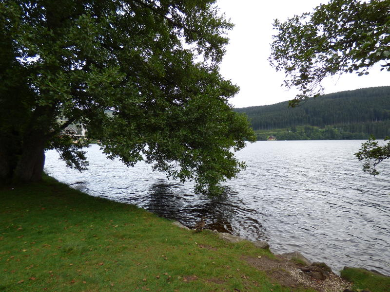 20140811_Titisee_002