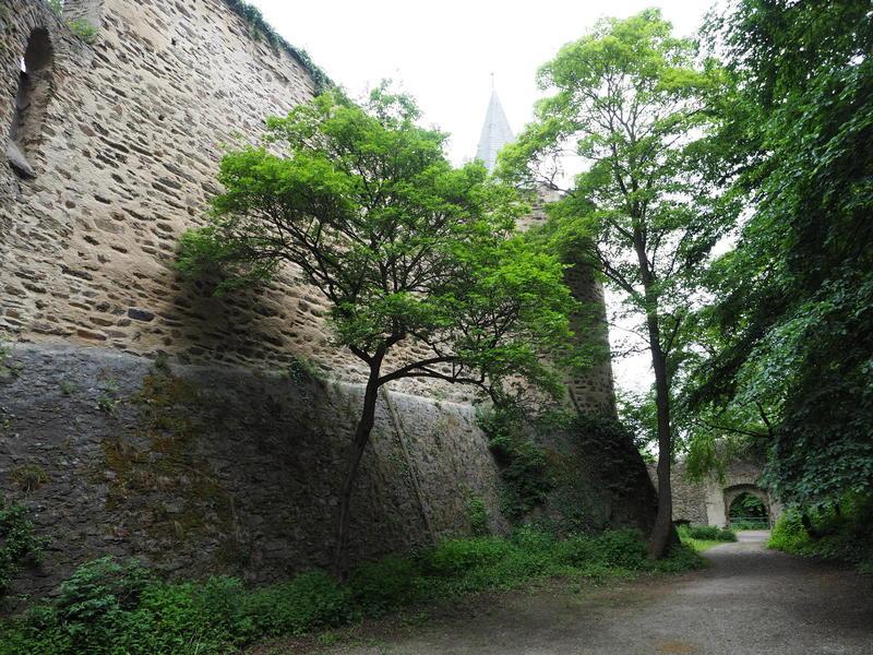 20150526_Burg_Eltz_Lahneck_und_Muenstermaifeld_031