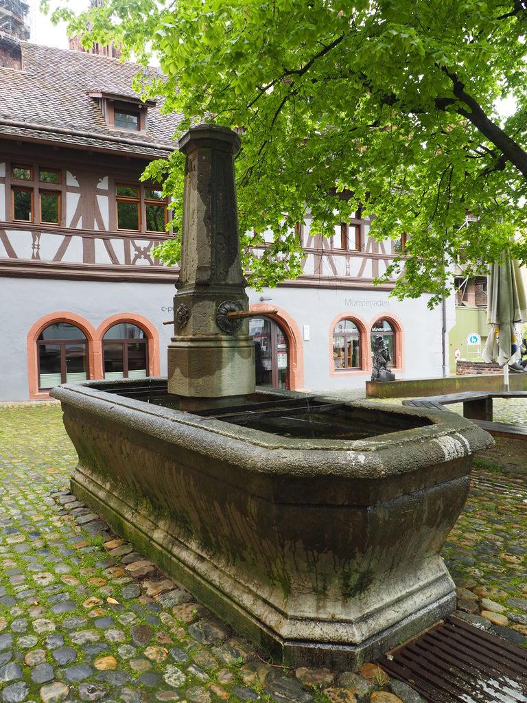 20160516_Freiburg_im_Breisgau_022