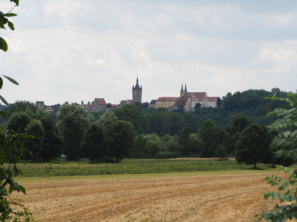20160717_Spaziergang_in_der_Naehe_010