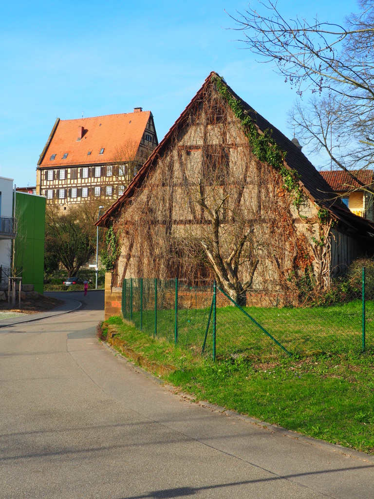 20170325_Neuenstadt_am_Kocher_021