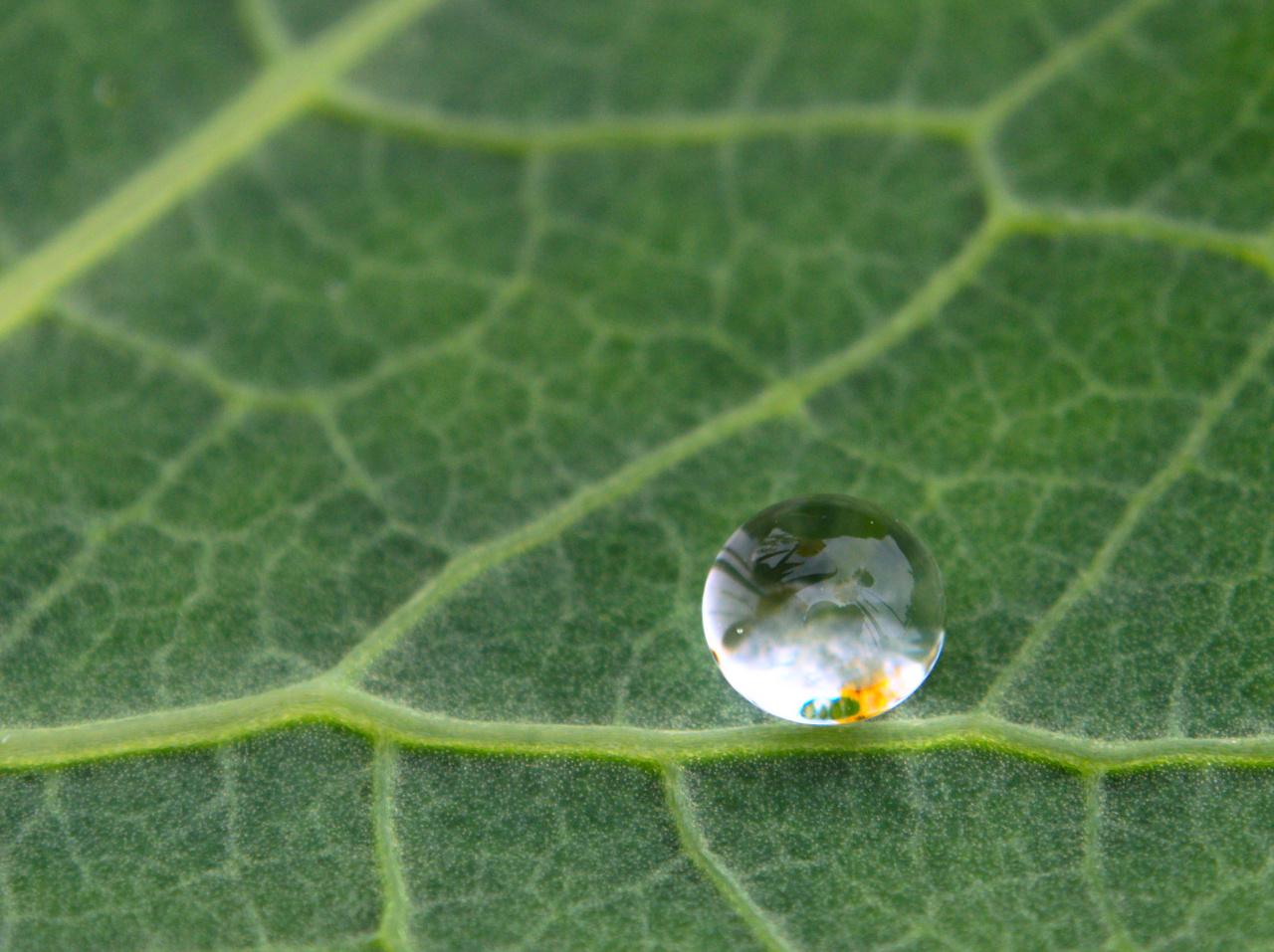 Wassertropfen_001