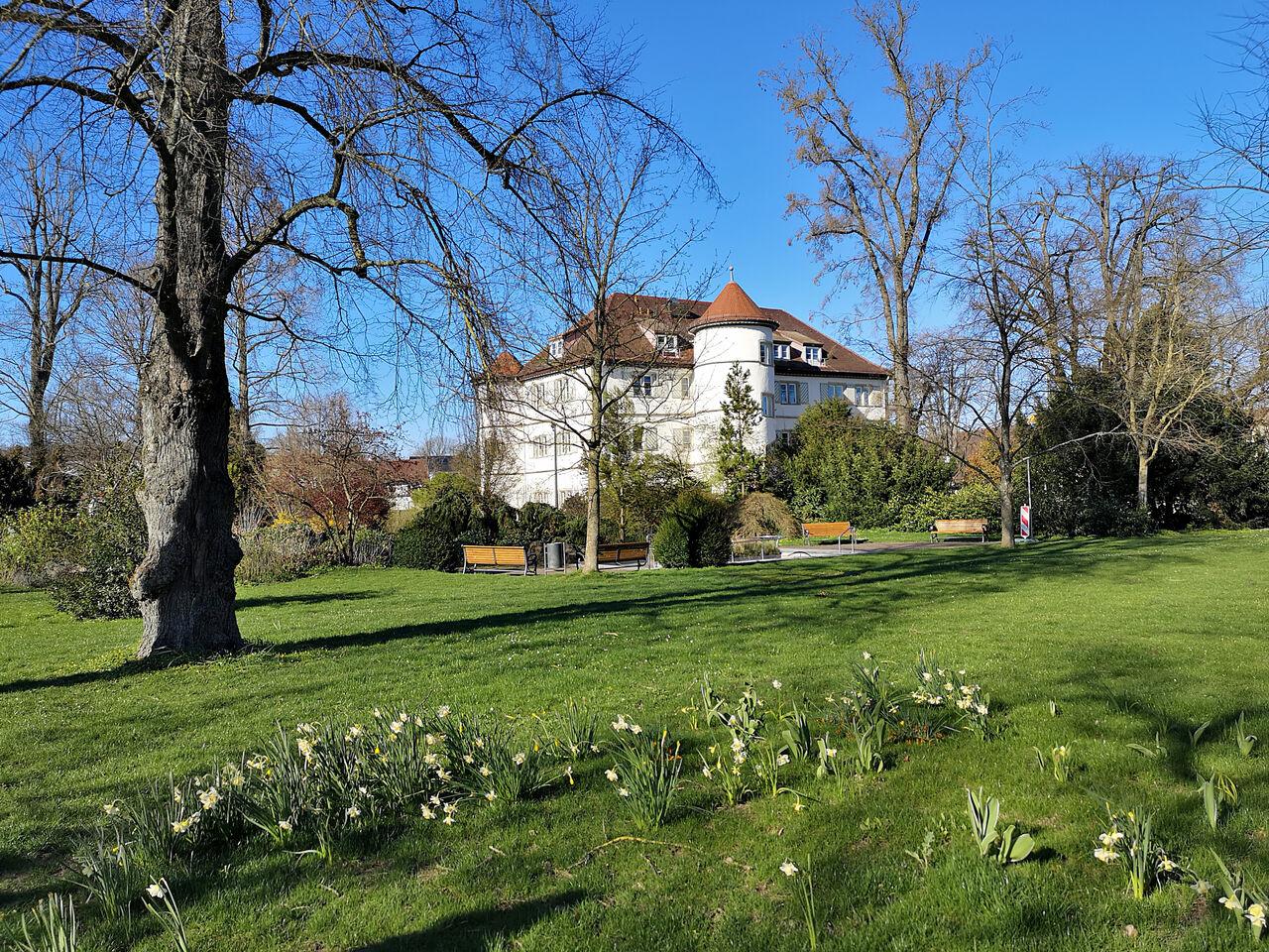 20200322_Schlosspark_in_Bad_Rappenau_002