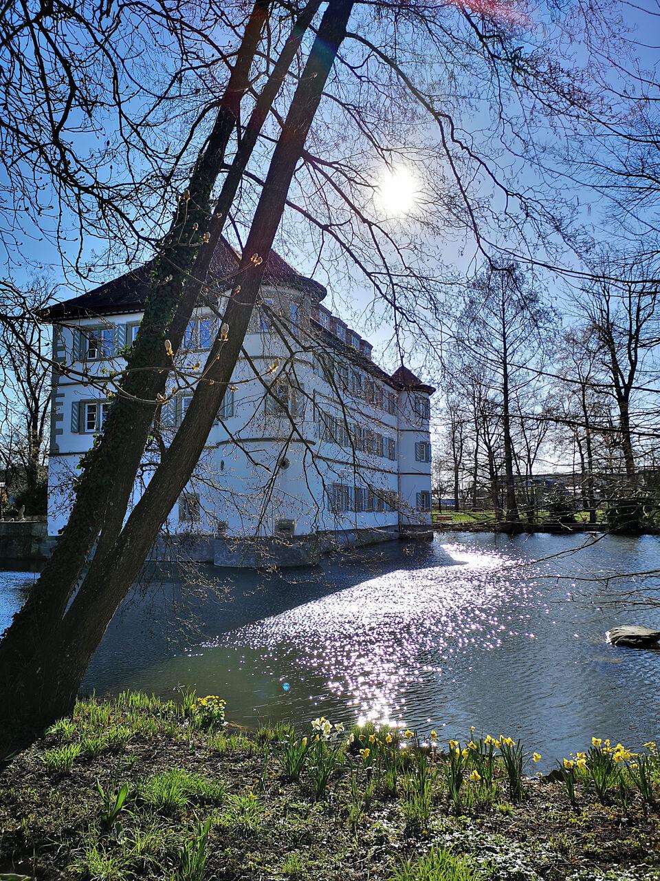 20200322_Schlosspark_in_Bad_Rappenau_004