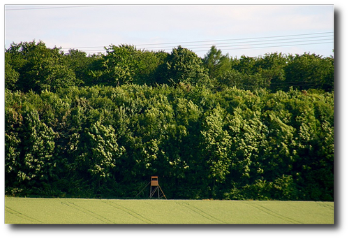 20080613_Fuerfeld_010