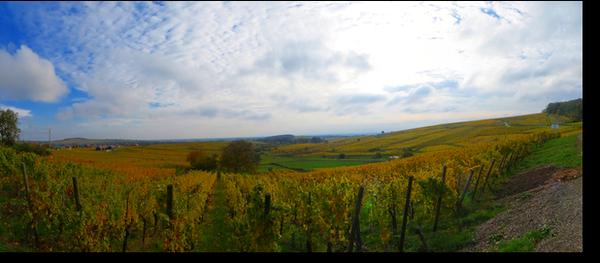 20121028_Panorama_01
