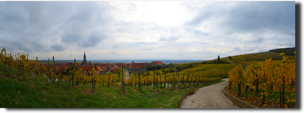 20121028_Panorama_04