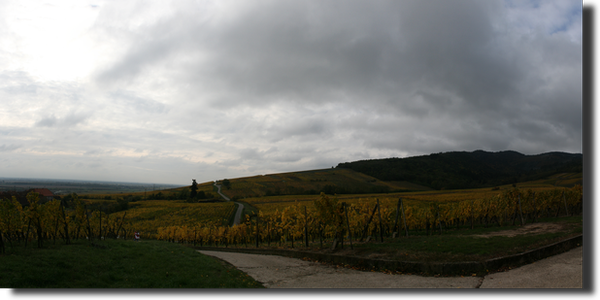 20121028_Panorama_06