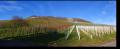 20121229_Panorama_Scheuerberg_004