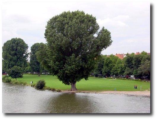 20040710_Heidelberg_003